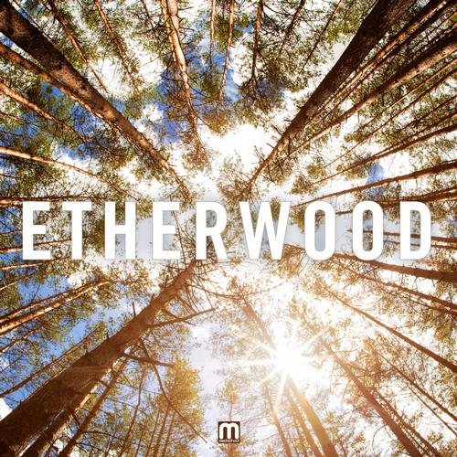 Etherwood – Hold Your Breath Release Cover