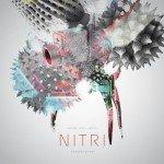 Nitri & Level 2 – Lies (feat. Grimm)
