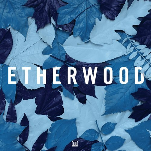 Etherwood – Caption Release Cover