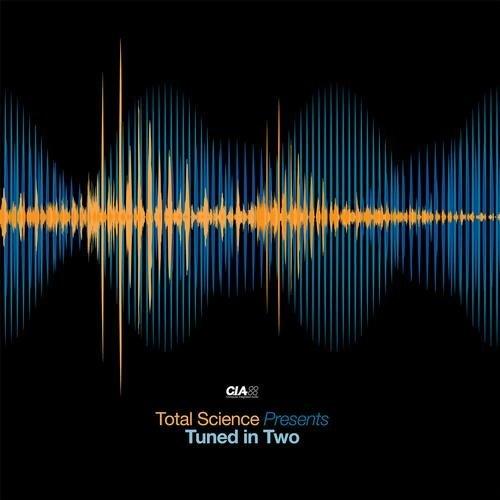 Zero T feat. Riya – Stolen Moments